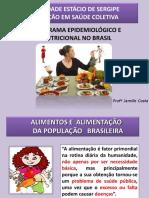 Aula 8- Panorama Epidemiológico e Nutricional No Brasil 2019.1