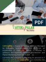 Catter Pillars