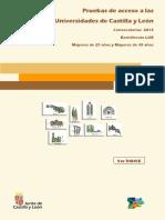 Pruebas de Acceso Universidad_2013.pdf