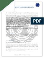 Modelo de resolución 2019