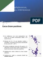 Staphylococcus, Streptococcus Otros