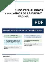 Trastornos Premalignos y Malignos de La Vulva y Vagina