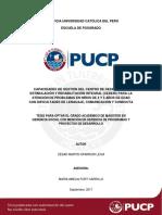 Sparrow Leiva Capacidades Gestión Centro PUCP