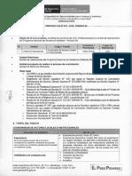 TDR Proceso CAS 075