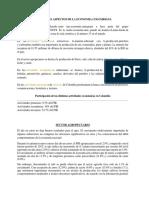 SECTORES ECONOMICOS COLOM..docx
