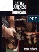 Cattle Lameness And Hoofcare - An Illustrated Guide.pdf
