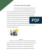 1ra Entrega Desarrollo Sindical - Copia