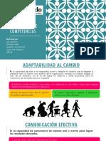 v3 Diccionario de Competencias