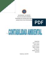 253289892-Contabilidad-Ambiental.docx