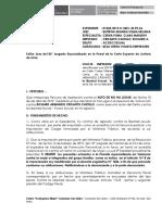 APELACION DE AUTO DE NO HA LUGAR BEAS VIOLETA.docx
