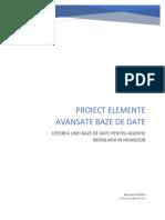 Proiect EABD Pischis Razvan