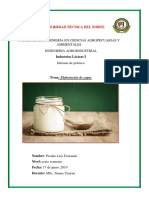 Informe de Yogur Artesanal