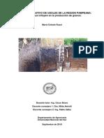Estudio Comparativo de Udoles en La Region Pampeana