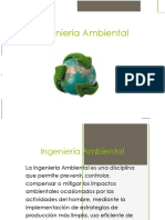 324820973-Ingenieria-Ambiental-1-pdf.docx