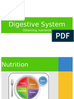 digestive_system.ppt