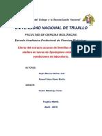 Informe TEA.docx