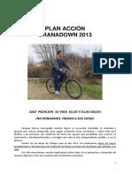 Plan Acción 2013