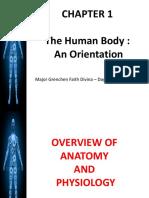 1 Anatomy SC.pptx