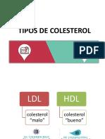 Tipos de Colesterol Df