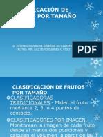 CLASIFICACION_DE_FRUTOS_POR_TAMANO.pdf