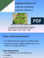 cultivodecilantrotec38-140211200608-phpapp02