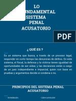 Lo Fundamental Del Sistema Penal Acusatorio-1