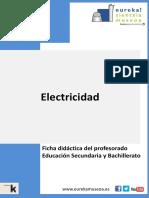 Largo Camino Electricidad