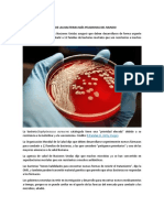 Lista de Las Bacterias Más Peligrosas Del Mundo
