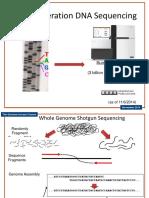 DNA Sequencings