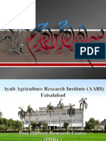 Ayub agriculture research institude presentation