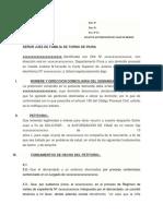 DEMANDA AUTORIZACIÓN DE VIAJE