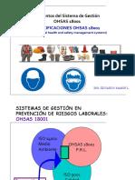 Especificaciones OHSAS 18001 DATOS Y DEFINICIONES.pdf