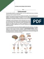 Guía de trabajo prueba hormonas.docx