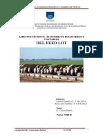 EXPLICACION FEEDLOT.pdf