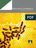 Homex Reporte Anual 2011.pdf