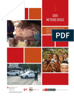 Guia Metodologica PP089