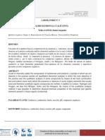 informe analisis cualitativo