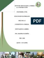 Consistencia_Normal_Gabriel_Montaquiza.pdf