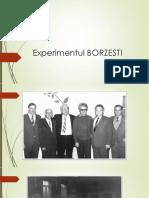 Experimentul BORZESTI