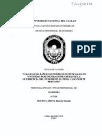 Tesis RMachuca.pdf