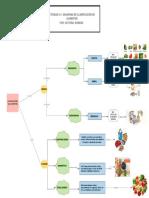 Diagrama de Clasificación de Alimentos