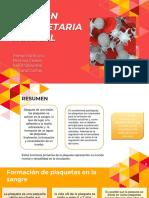 Funcion plaquetaria normal