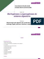Evolução Do Sistema Digestório - Anatomia Embriologia