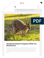 Bowarchery.com Tips Bowhunting for Kangaroo What You Should Know