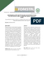 Informe PMP