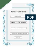 Curriculum Vitae 2018 FREDY CCAMA M