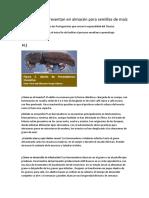 cemillas   6 informe del mai123123z.docx