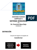 CAPÍTULO V_SISTEMA SENSORIAL.pdf