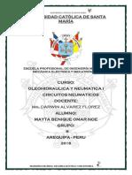 informe-7-CIRCUITOS-2 (5).docx