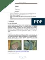 Laboratorio Placenta Embriología UCE 2014